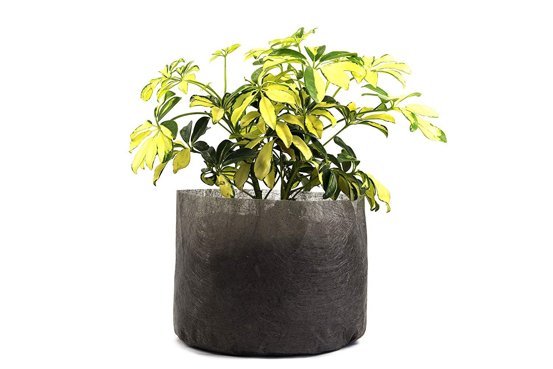 "500 Pack - 1/2 Gallon Fabric Grow Bags 5"" Round X 5"" Tall - Ruth's Tree Farm Fabric Pots"