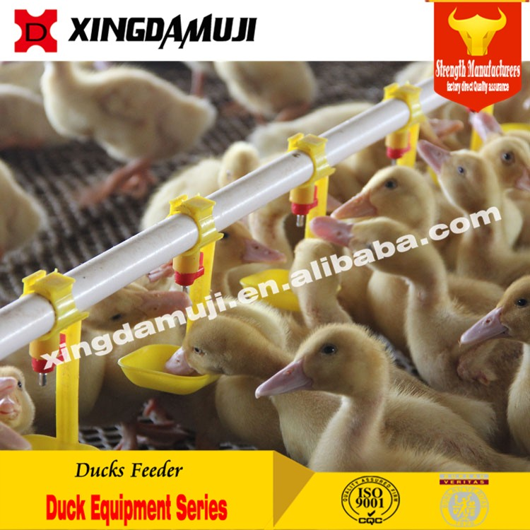 Automatic Poultry Pan Feeding System Chicken Ducks Feeder Drinker
