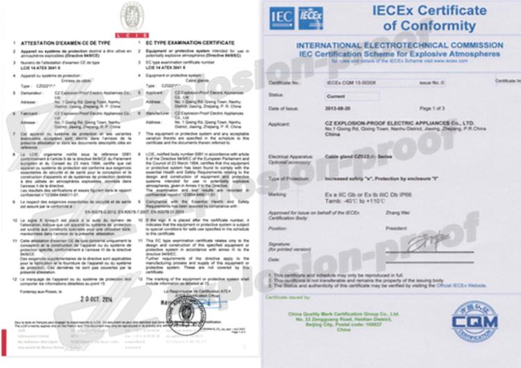ATEX IECEX Zone1 Zona 2 Ex e a prova di Esplosione di metallo cavo di ingresso dimensioni (Metrico NPT G filo)