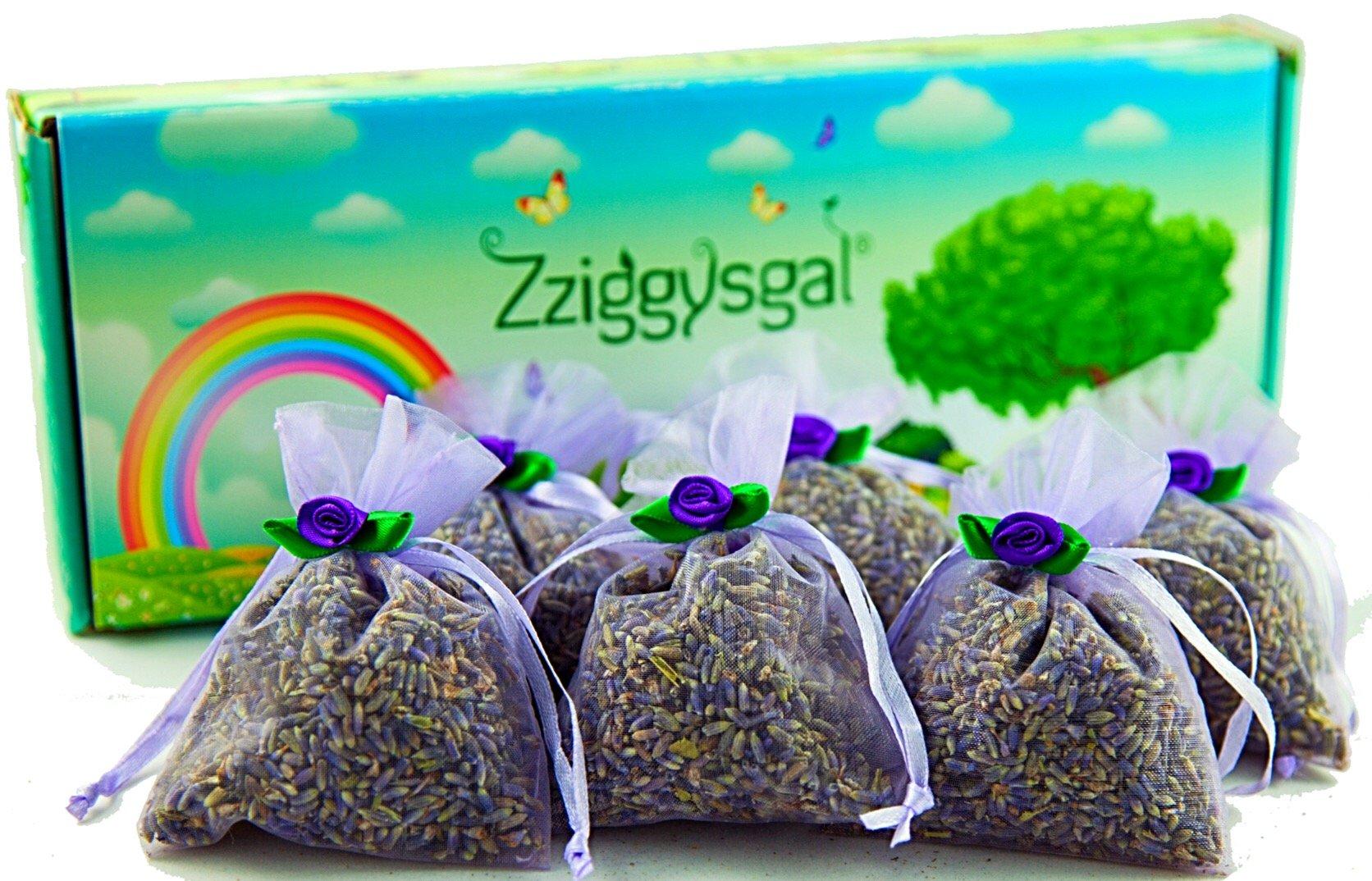 Zziggysgal 6 French Lavender Sachets in a Beautiful Keepsake Box (Lavender colored)