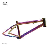 RAYMAX Custom Design Bicycle Parts Hi-tensile China Oil Slick Bmx bike Frame