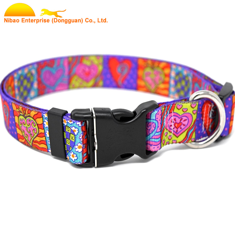 Customizable print collar for any size dog