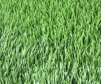 Mini Football Field Dark Green Olive Green Soccer Pitch