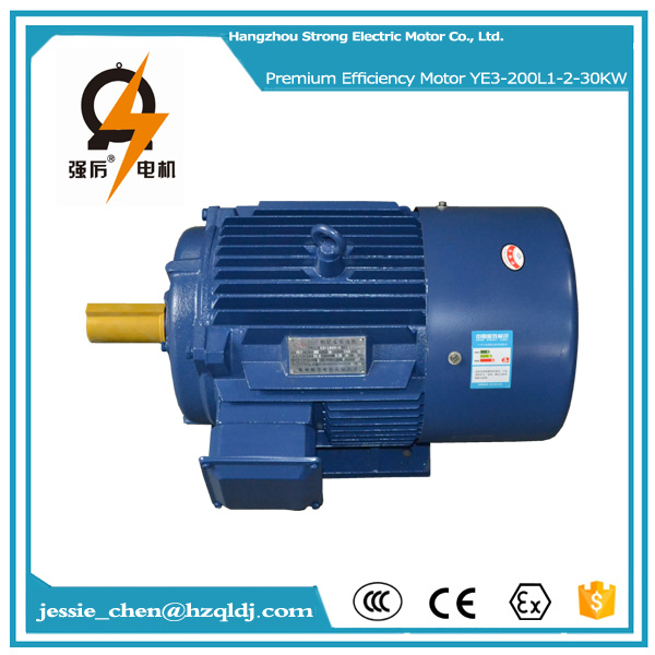 40hp 30kw ac 220v 50hz IP54 squirrel cage 3 phase induction electric motor