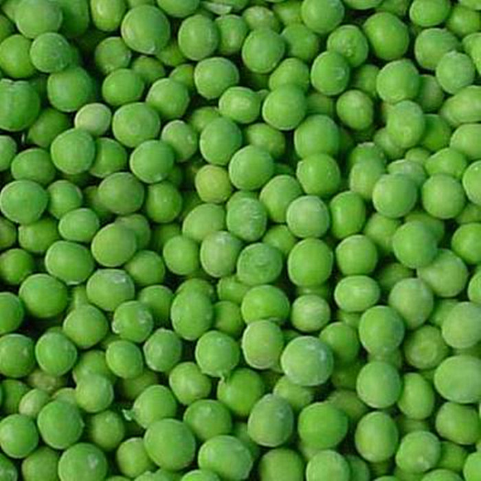 Bulk Canned Green Peas Canned Food
