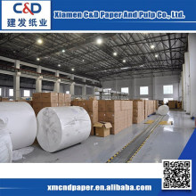 China Manufacturer Economic Jumbo Roll Toilet Paper