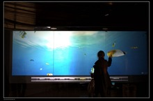 42 inch usb interactive touch foil film through glass, Truly 10 points usb touch foil,touch screen foil