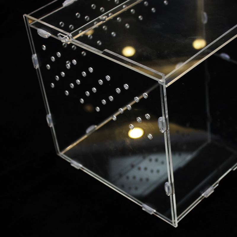 construit up reptile plexi verre terrarium acrylique bo te d 39 insectes pet cage buy pet cage. Black Bedroom Furniture Sets. Home Design Ideas