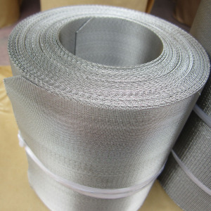 Anping supply SS 201 202 304 316 Plastic Extrusion flat mesh belt