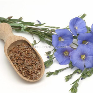 Flax seed Linseed Linum Limtseed Birds food oil seeds