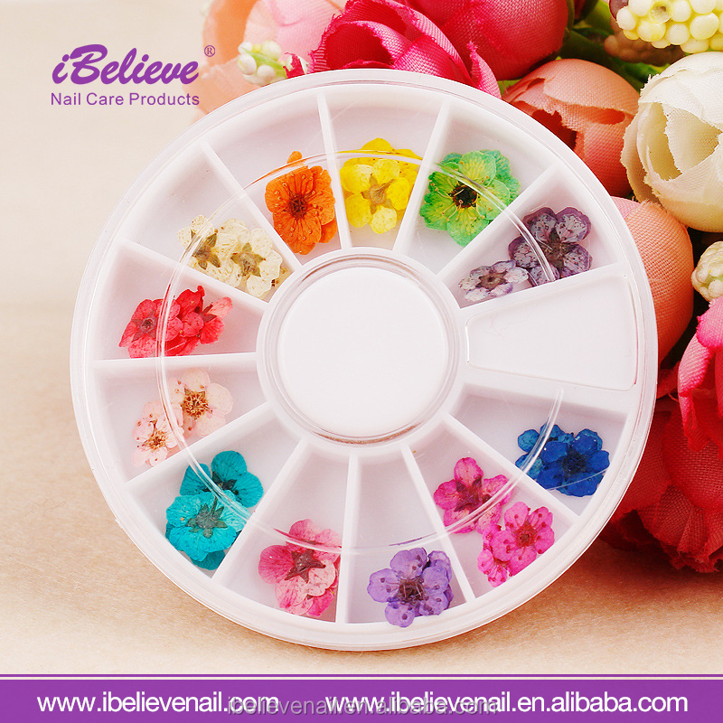 Professional Good Quality Natural Dry Flower 3D Stickers Decals Nail art Dried Flowers