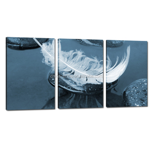 Feather Photo Printing Art/Canvas Printing Service/Home Decor Wall Art