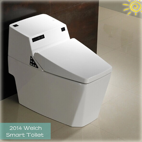 751D Floor Mounted Installation Type automatic smart sensor toilet bidet design