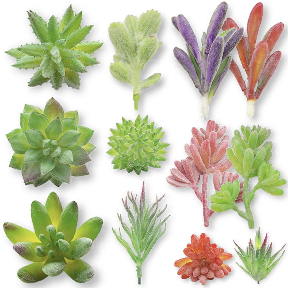 DomeStar Artificial Succulent Plants,12PCS Assorted Fuzzy Fake Succulents Flowers Unpotted Realistic Cactus Cute Plastic Succulents for Decoration