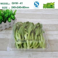 Food grade rectangular clear plastic vegetable packaging boc with hinged lid