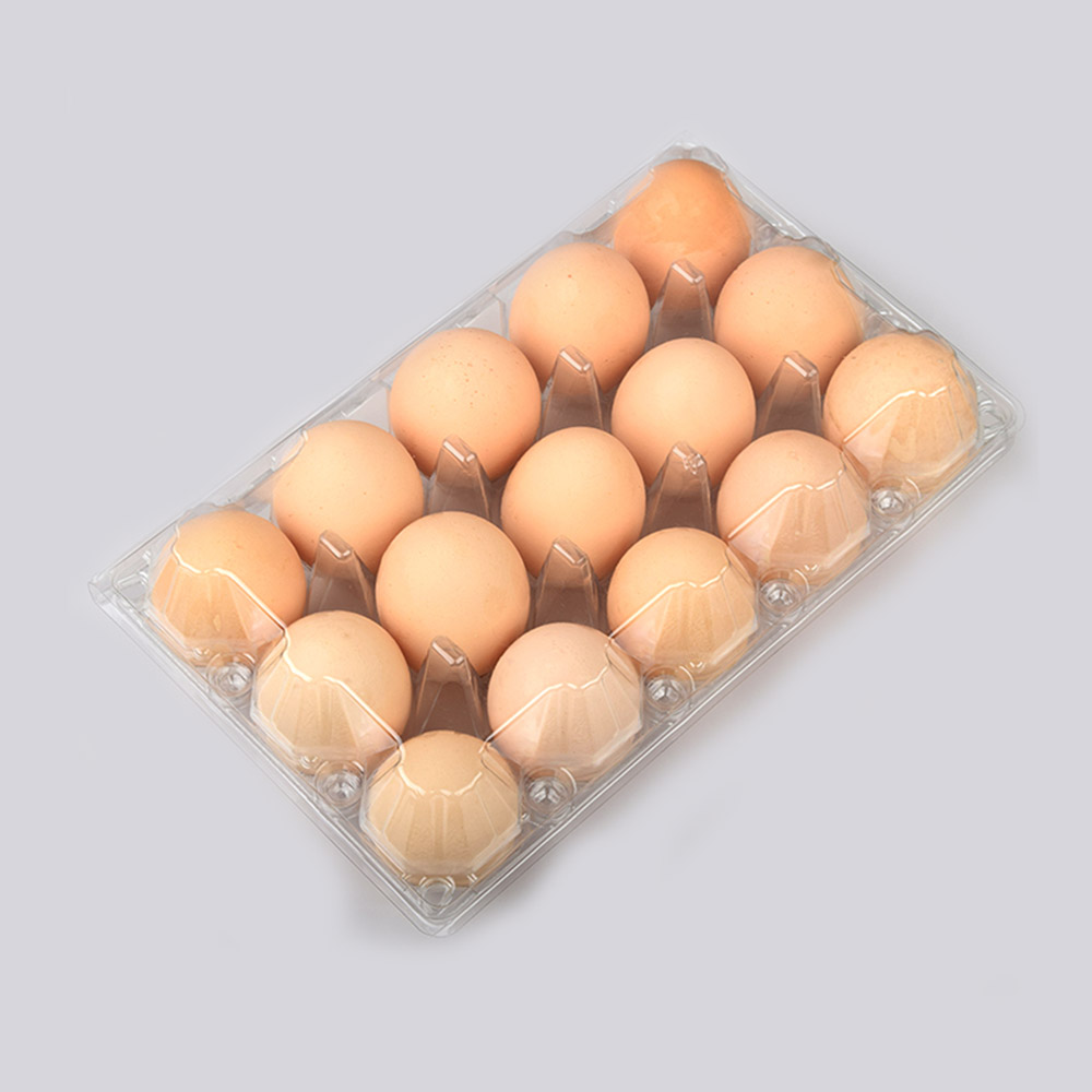 Hot sale clamshell box biodegradable disposable tray clear plastic blister packaging egg tray