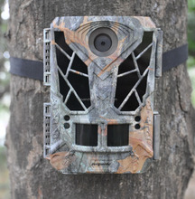 scouting trail camera