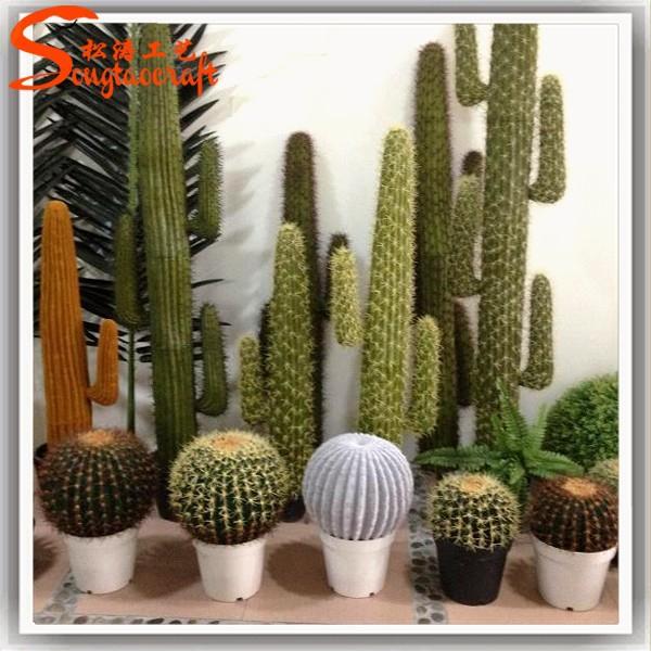 Artificiale piante grasse tropicali deserto piante for Piante grasse ornamentali
