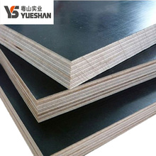 china price 18mm FSC back phenolic film faced poplar core plywood boards