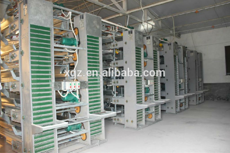 Automatic Control Equipment Chicken Egg House Steel Structure Poultry Farm Supplier China