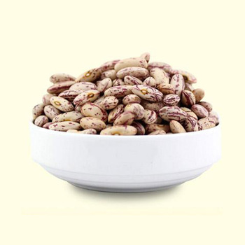 Factory Wholesale high quality LSKB Light speckled kidney beans for Many years