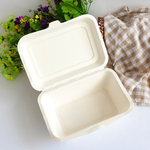 Biodegradable Bagasse Tableware Dishes