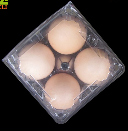 Plastic 6 Holes Blister Disposable Quail Egg Tray <strong>Manufacturing</strong>