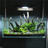 New type top sale super white glass fish tank