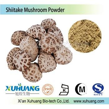 ISO 9001 KOSHER HALAL factory supply wholesale Chaga mushroom extract