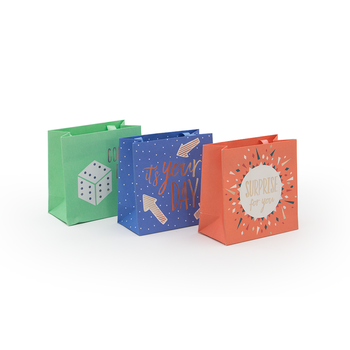 Color Printed Paper Gift Bags With Company Logo