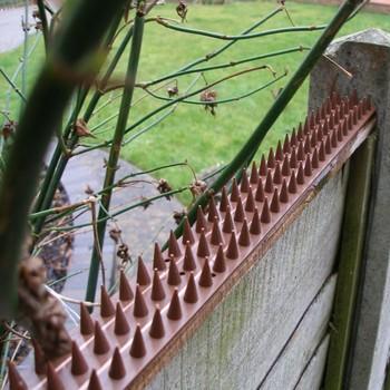 Anti Klettern Kunststoff Zaun Wand Sicherheit Spike Vogel Katze