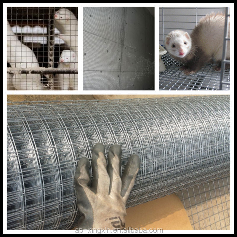 Chers galvanis soud lapin cage oiseaux rouleau de for Fenetre a fer maille et verre dormant