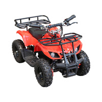 Kids Electric ATV 36V 12AH 500W Quad Bike 4*4 Electric Mini ATV