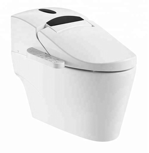 Bathroom Infrared Sensor Electronic Automatic Toilet ZJS-02B