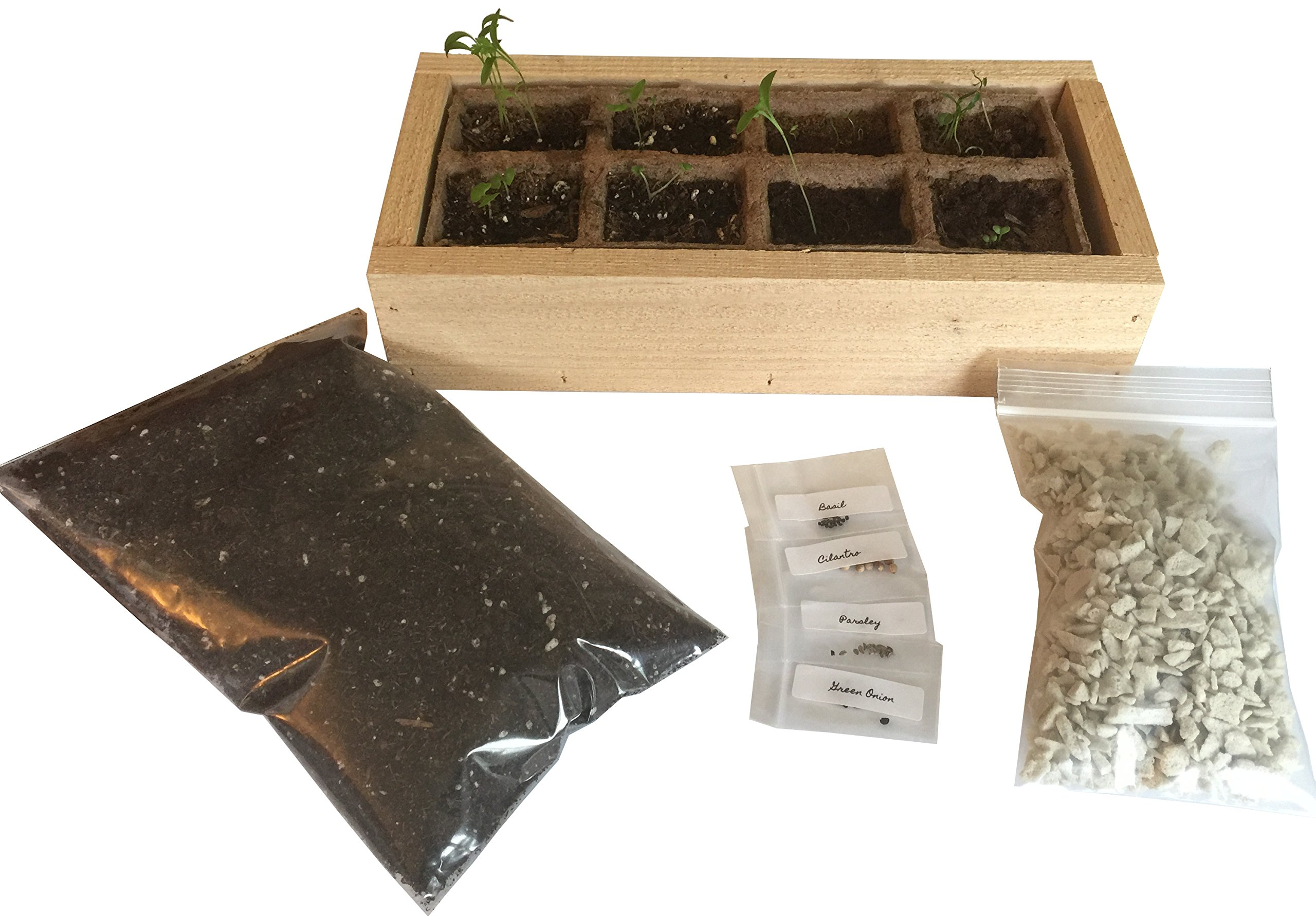 Herb Garden Starter Kit - Includes All You Need to Start Growing Herbs the Day it Arrives - Cilantro, Basil, Parsely, Thyme (Natural-Cedar)