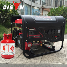 BISON CHINA Home Use Electric 50HZ/60HZ Natural Gas 6kva Power Generator
