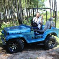 Cheap China UTV 4x4 / Utility ATV Farm Vehicle for Sale
