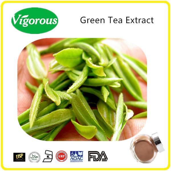 pure 20% Polyphenols Instant green tea powder / Instant green tea extract
