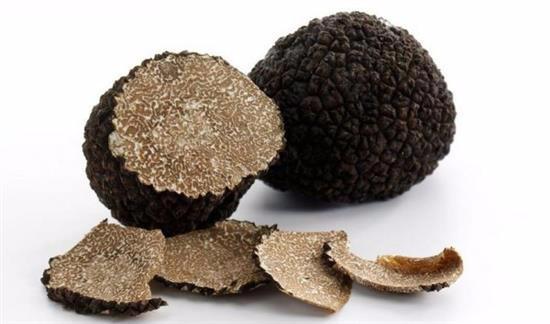 S ch es truffe noire tranche champignon sauvage acheter - Culture de la truffe ...