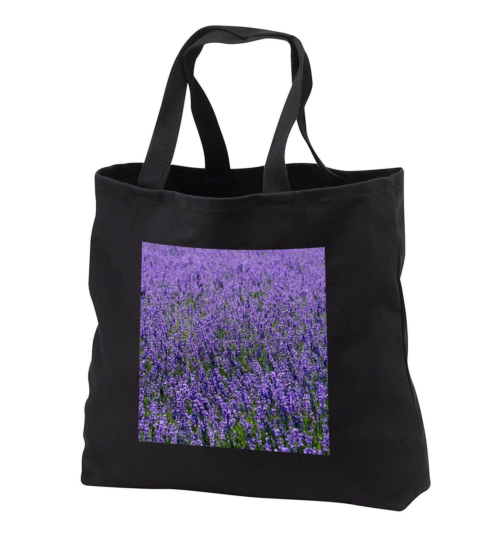 tb_225872 Danita Delimont - Flower - Lavender, Furano, Hokkaido Prefecture, Japan - Tote Bags