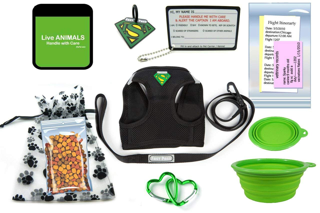 In Cabin Pet Airline Travel Accessory Kit-GREEN