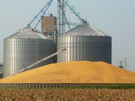 1000 ton grain silo, 1000 ton grain silo Suppliers and