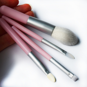 Free Samples 4pcs Plastic Travel Private Label Makeup Brush Set