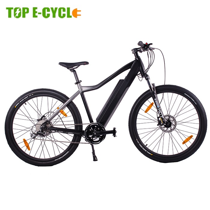 Best Brands MTB pedelec Cheap Chinese 48v e mountain bike electric bicycle 2017