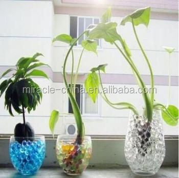 Water Beads For Fresh Cut Plants Decoration Buy Water Beads For