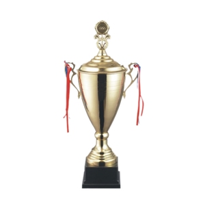 High-end gold metal awards 3066ABC gifts souvenir keepsake sports golden trophy cup china trophies