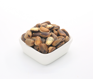Chinese Pine nuts in shell for bulk wholesale