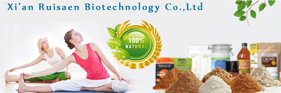 Supply Dried shoot extract Blackberrglily Rhizome  P.E Extract 10 : 1 powder for bulk