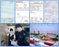 fast reliable ocean sea logistics shipping freight forwarder ------Ben(skype:colsales31)