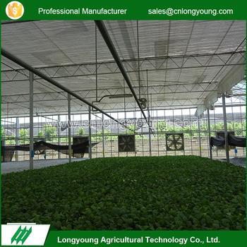 Disesuaikan desain ganda ventilasi atap kaca rumah kaca pertanian & Disesuaikan Desain Ganda Ventilasi Atap Kaca Rumah Kaca Pertanian ...
